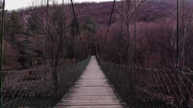 vídeos de stock e filmes b-roll de aerial view of forest and river - ponte suspensa