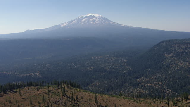 aerial view of gifford pinchot national forest with mount adams in background, washington, united states of america - 国有林点の映像素材/bロール