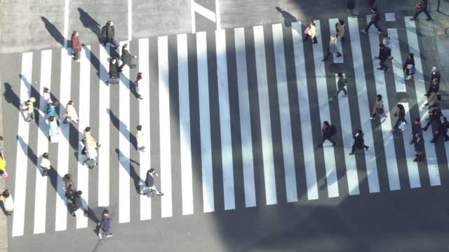 Aerial view of Ginza crossing