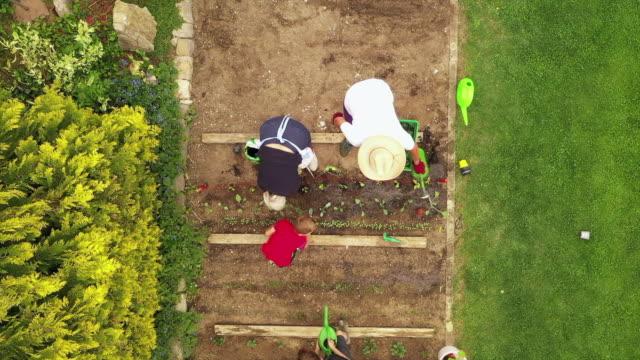 stockvideo's en b-roll-footage met aerial view of grandparents gardening with grandchildren - 6 7 years
