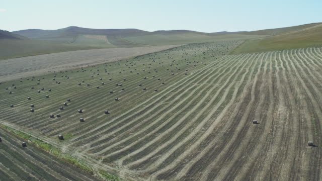 aerial view of grassland and haystack in china - haystack stock videos & royalty-free footage
