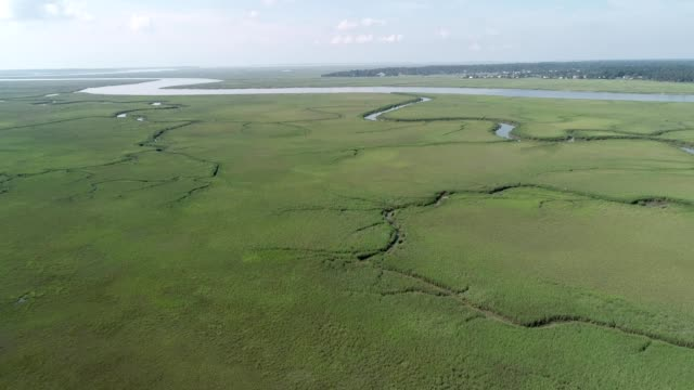 Aerial view of grassy countryside in Tybee Island Georgia