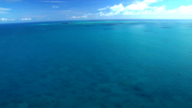 aerial view of great barrier reef queensland australia - south pacific ocean stock videos & royalty-free footage