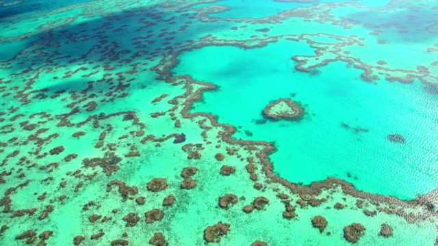 aerial view of great barrier reef queensland australia - cay insel stock-videos und b-roll-filmmaterial