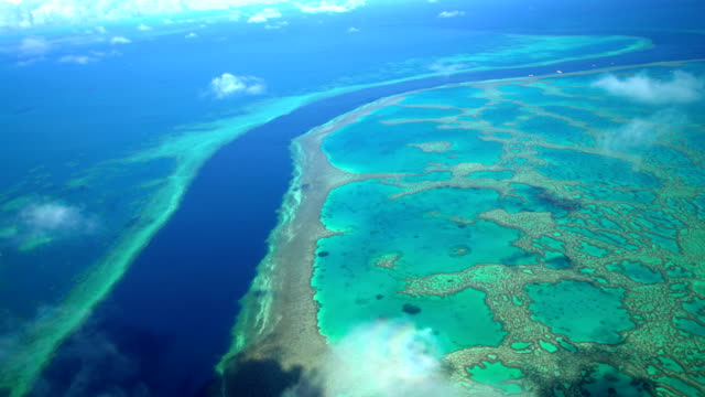 aerial view of great barrier reef queensland australia - great barrier reef stock videos & royalty-free footage