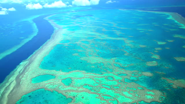 vídeos de stock, filmes e b-roll de aerial view of great barrier reef queensland australia - recife fenômeno natural
