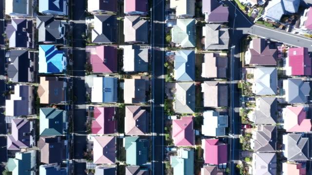 aerial view of green forest - 市街地の道路点の映像素材/bロール