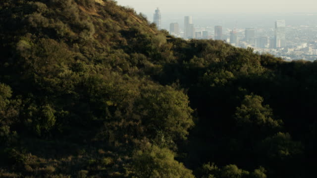 stockvideo's en b-roll-footage met aerial view of griffith observatory overlooking los angeles - hollywood california