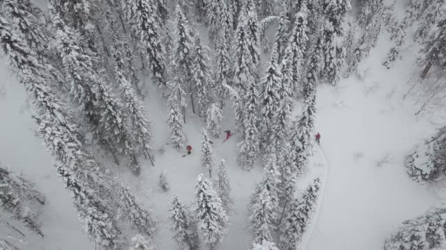 aerial view of group of skiers touring up mountain - winter sport stock videos & royalty-free footage