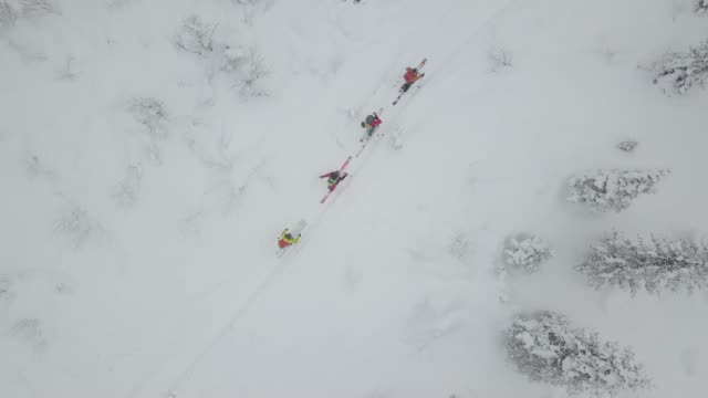 veduta aerea di un gruppo di sciatori che s'alpinismo - bastoncino da sci video stock e b–roll