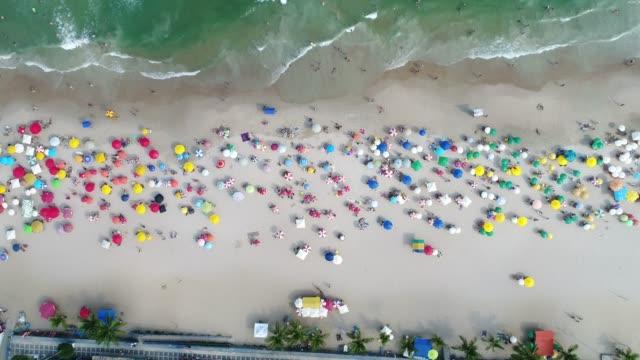 vídeos de stock e filmes b-roll de aerial view of guaruja beach in sao paulo, brazil - cultura sul americana