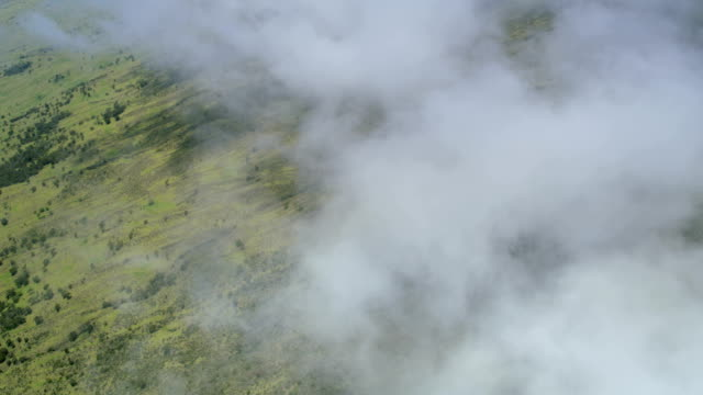aerial view of haleakala national park maui hawaii - hawaii inselgruppe stock-videos und b-roll-filmmaterial