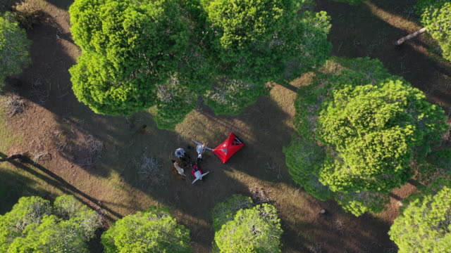 aerial view of happy family camping in forest - camping stock videos & royalty-free footage