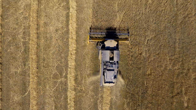 aerial view of harvesting machine - agricultural equipment stock videos & royalty-free footage