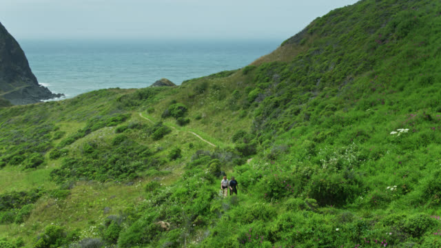 aerial view of hikers in gorgeous landscape on the oregon coast - oregon us state stock videos & royalty-free footage