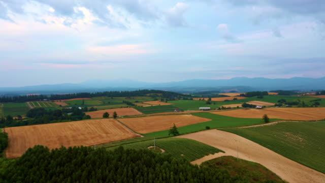aerial view of hokkaido fields - biei town stock videos & royalty-free footage