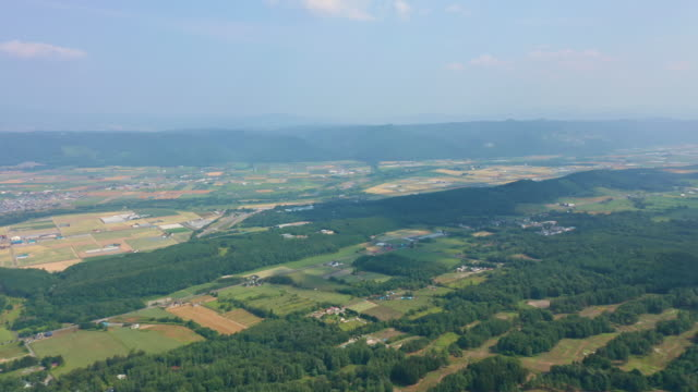 aerial view of hokkaido fields - liyao xie stock videos & royalty-free footage