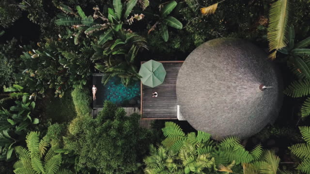 aerial view of holiday weekend relaxing in luxury with tropical jungle villa bali , indonesia - bali stock videos & royalty-free footage