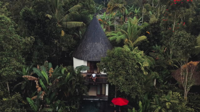 aerial view of holiday weekend relaxing in luxury with tropical jungle villa bali , indonesia - ubud stock videos & royalty-free footage