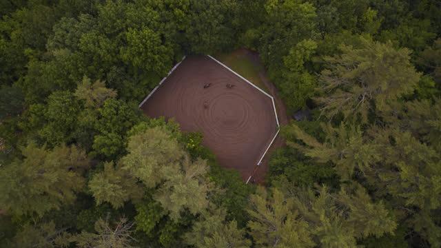 vidéos et rushes de slo mo aerial view of horse farm surrounded by trees in a forest - activités de week end