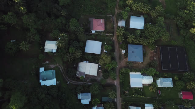 vídeos de stock e filmes b-roll de aerial view of houses with a dirt road and trees - ilha huahine