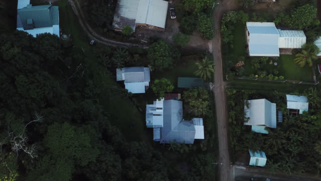 aerial view of houses with a dirt road and trees - huahine island stock videos and b-roll footage