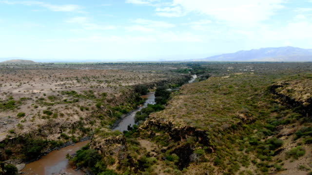 vídeos de stock e filmes b-roll de aerial view of intensive overgrazing and agricultural usage of natural habitats, awash river / ethiopia - etiópia