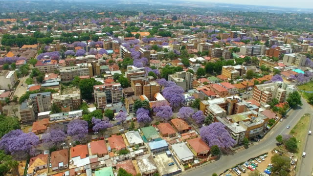 vidéos et rushes de aerial view of johannesburg cbd, johannesburg, south africa - quartier résidentiel