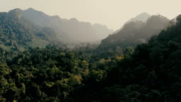 Aerial view of jungles at sunset
