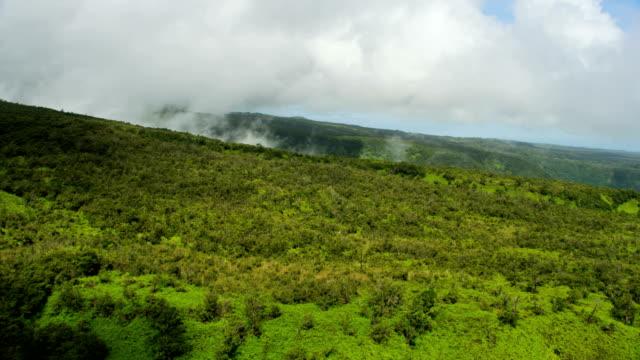 aerial view of jurassic coast pacific big island - jurassic stock videos & royalty-free footage