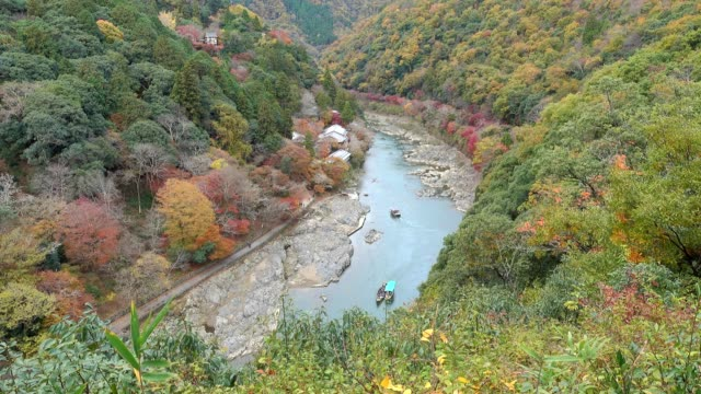 aerial view of katsura river in autumn season from arashiyama viewpoint, kyoto japan - natural parkland stock videos & royalty-free footage