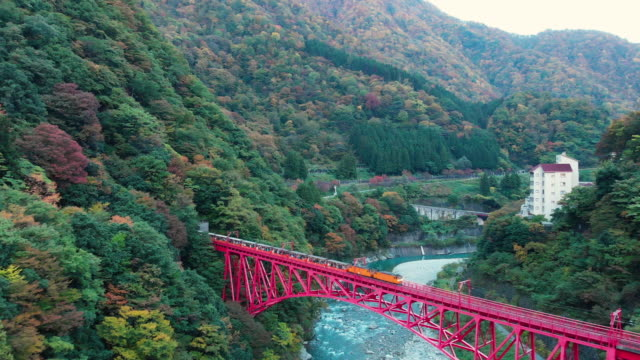 aerial view of kurobe gorge railway in autumn season, toyama, japan. - railway bridge stock videos & royalty-free footage