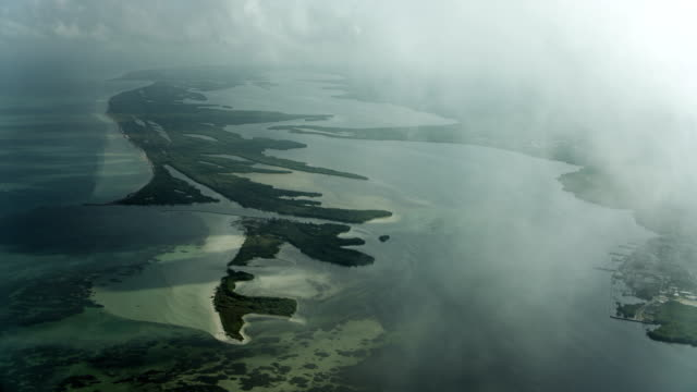 aerial view of lagartos river in mexico - yucatan peninsula stock videos and b-roll footage