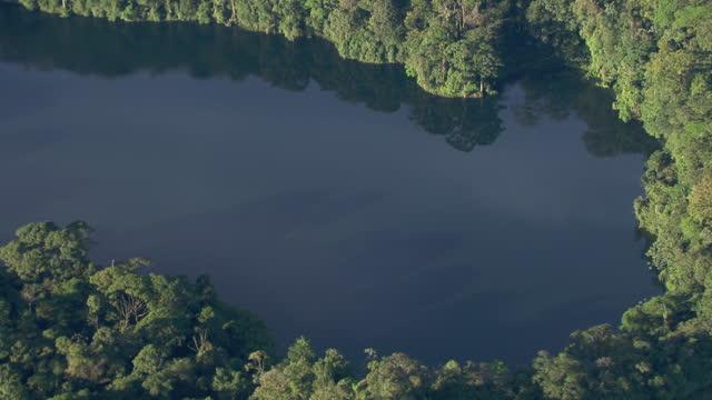 vídeos de stock, filmes e b-roll de aerial view of laguna del congo in the rainforest in alajuela province, costa rica. - laguna