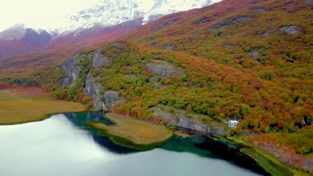 aerial view of lake and lush autumn foliage - provinz chubut stock-videos und b-roll-filmmaterial