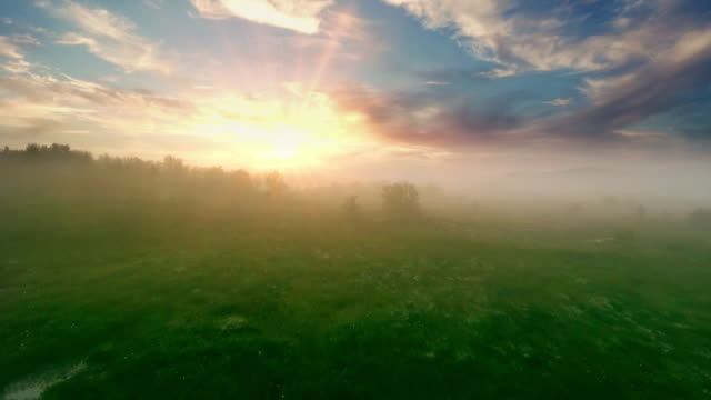 luftaufnahme des sees bei sonnenaufgang, fliegen über morgennebel am see. - fantasy stock-videos und b-roll-filmmaterial