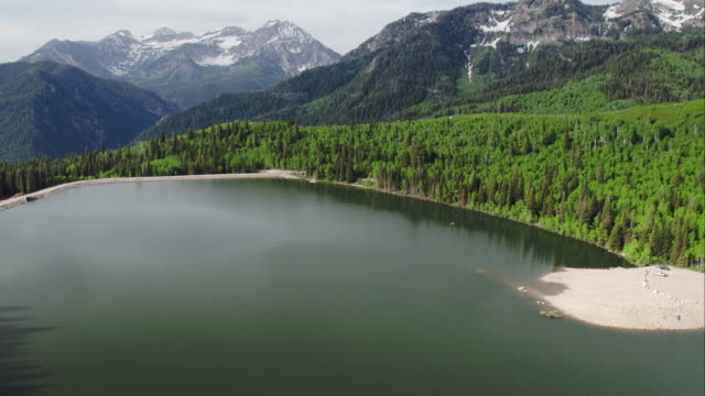 aerial view of lake surrounded by green forest and mountains - american fork city stock videos & royalty-free footage