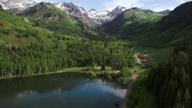 Aerial View of Lake Surrounded by Green Forest and Mountains