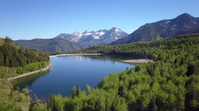 aerial view of lake surrounded by green forest - american fork city stock videos & royalty-free footage