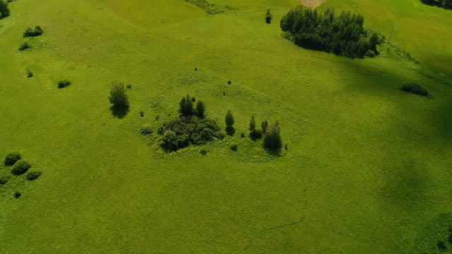 aerial view of landscape - pasture stock videos & royalty-free footage