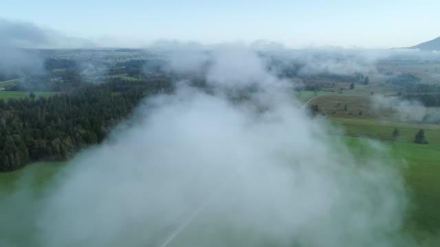 aerial view of landscape with rural road through meadows with fog at morning. loisach moor or loisach-kochelsee-moor, blaues land region, upper bavaria, bavaria, germany, europe. - rätsel stock-videos und b-roll-filmmaterial