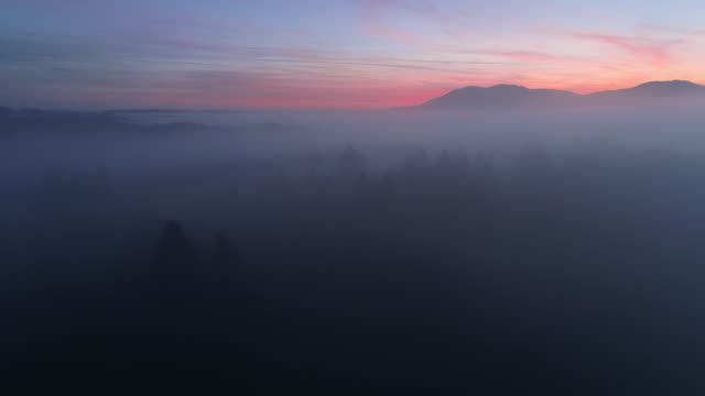 aerial view of landscape with trees and fog at sunrise - dawn. in distant are the bavarian alps. - bavarian alps stock videos & royalty-free footage