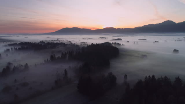 stockvideo's en b-roll-footage met aerial view of landscape with trees and fog at sunrise - dawn. in distant are the bavarian alps. - bavarian alps