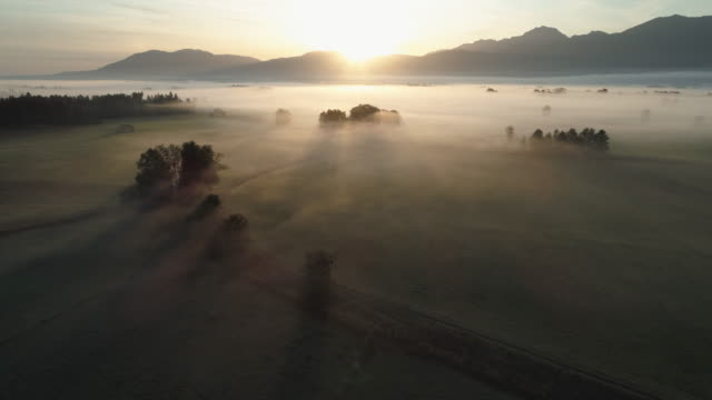 stockvideo's en b-roll-footage met aerial view of landscape with trees and fog at sunrise. in distant are the bavarian alps. - bavarian alps