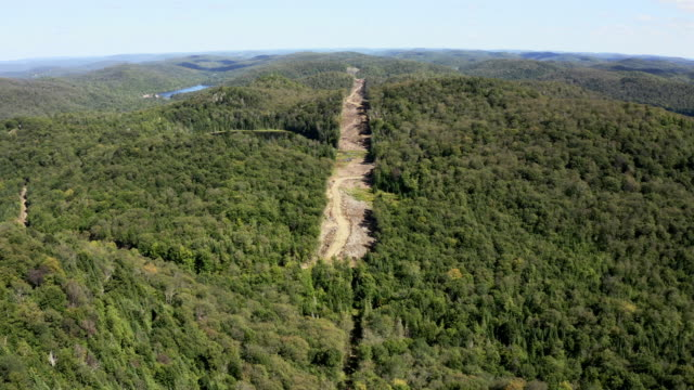 aerial view of laurentian's landscape, quebec, canada - power cable stock videos & royalty-free footage