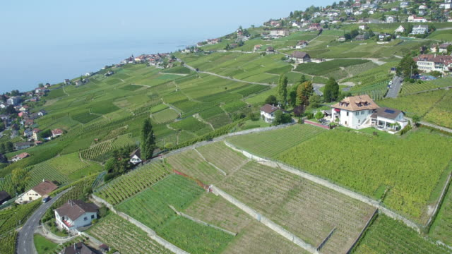 aerial view of lavaux vinyard - montreux stock videos and b-roll footage