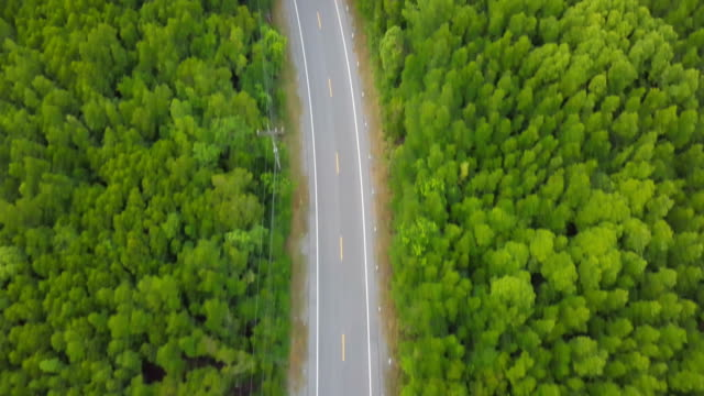 aerial view of local road trip in thailand - single track stock videos and b-roll footage