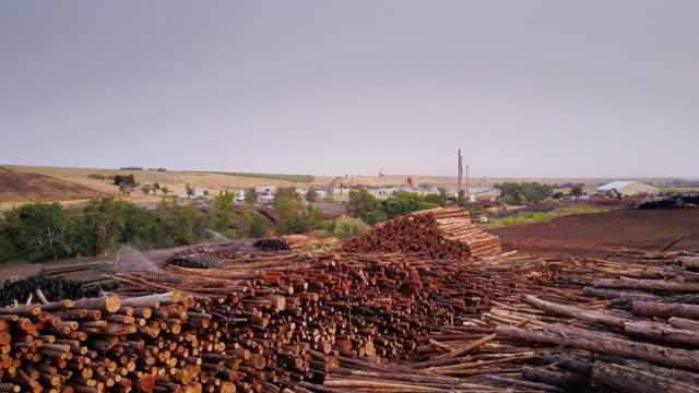 aerial view of lumber yard - timber yard stock videos & royalty-free footage