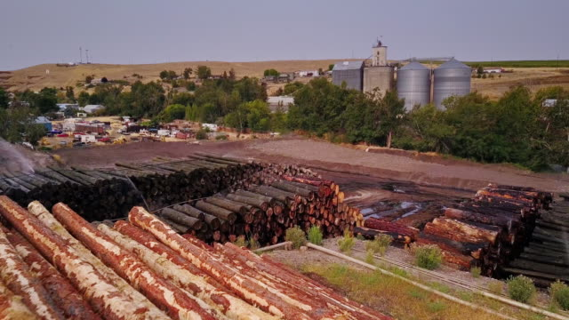 aerial view of lumber yard - lumberyard stock videos and b-roll footage