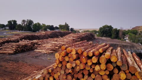 aerial view of lumber yard - timber yard stock videos & royalty-free footage